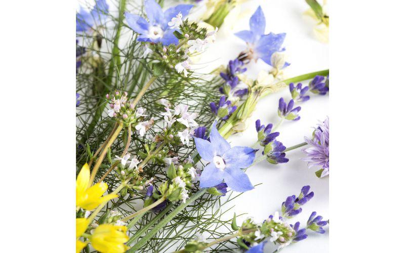 Edible Flower Mix