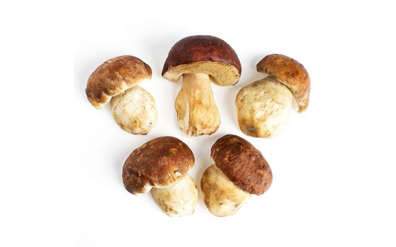 Grade No. 1 Porcini Mushrooms
