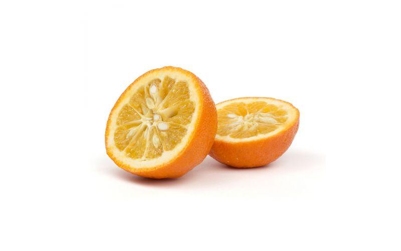 Seville Sour Oranges