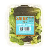 Baby Romaine Lettuce
