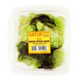 Butter Lettuce Leaves