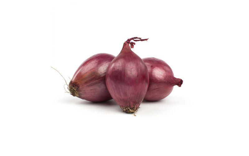 Medium Red Onions