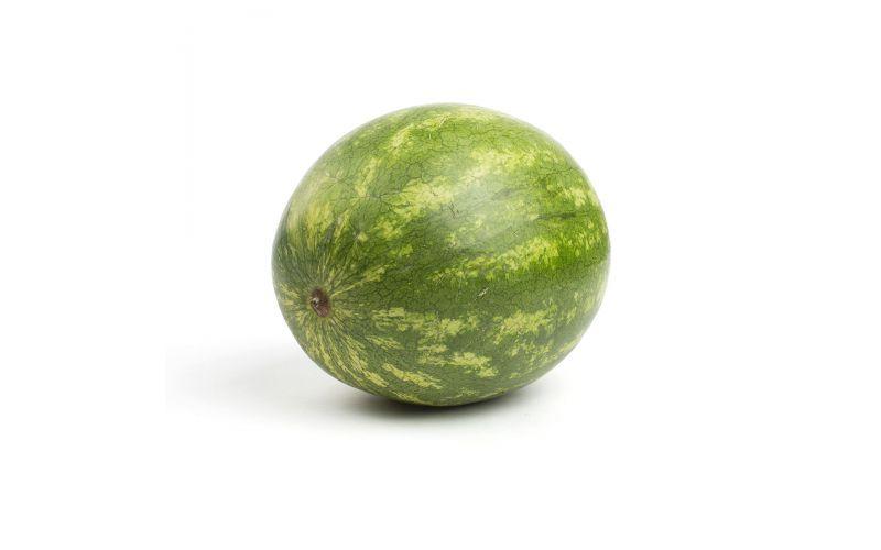 Seedless Watermelon Bin
