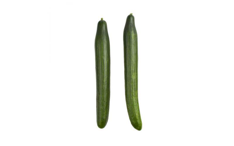 Hot House Cucumbers