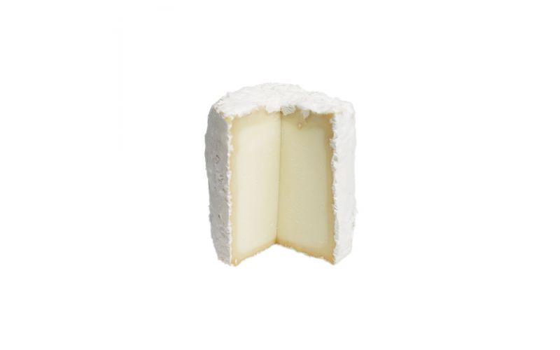Three Sisters Cheese