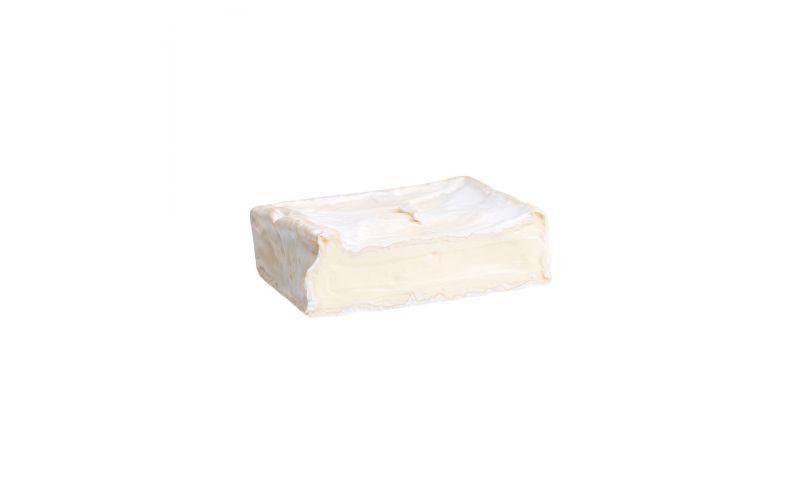 Camembert Cheese Squares