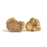 Fresh Medium White Alba Truffles