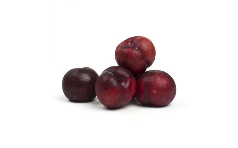 Red Raspberry Pluots