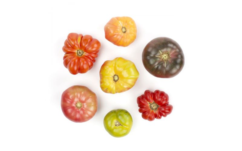 Mix Large Heirloom Tomatoes