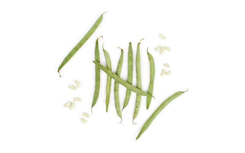 Organic Flageolet Beans