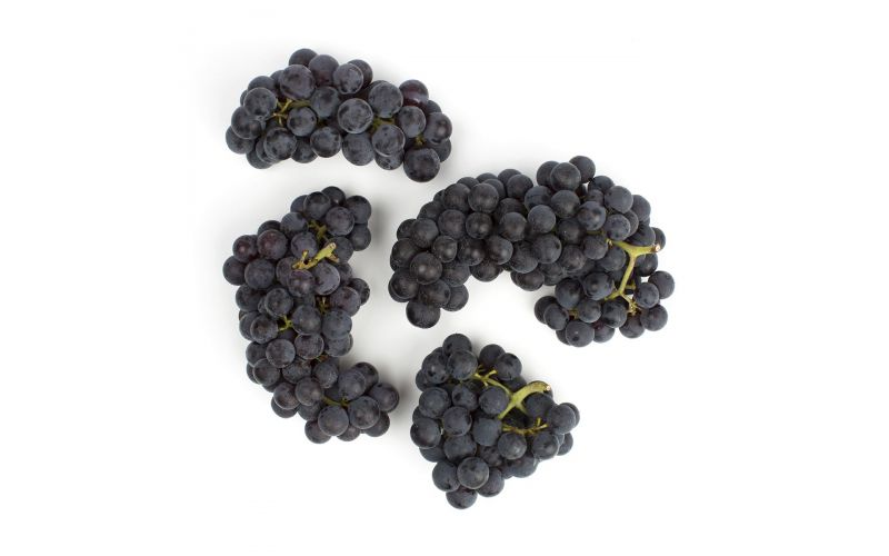 Organic Purple Mars Grapes