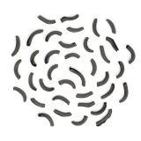 Organic Cuttlefish Ink Spaccatelli Pasta