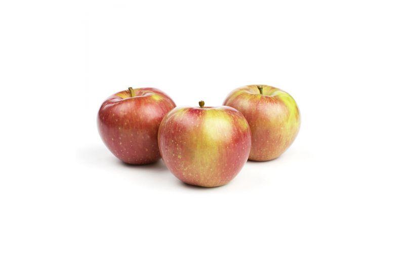 Mollies Delicious Apples