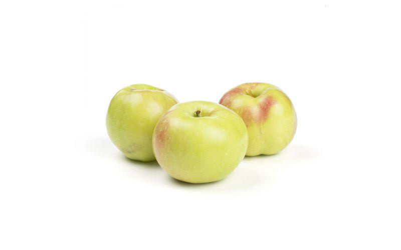 Gravenstein Heirloom Apples